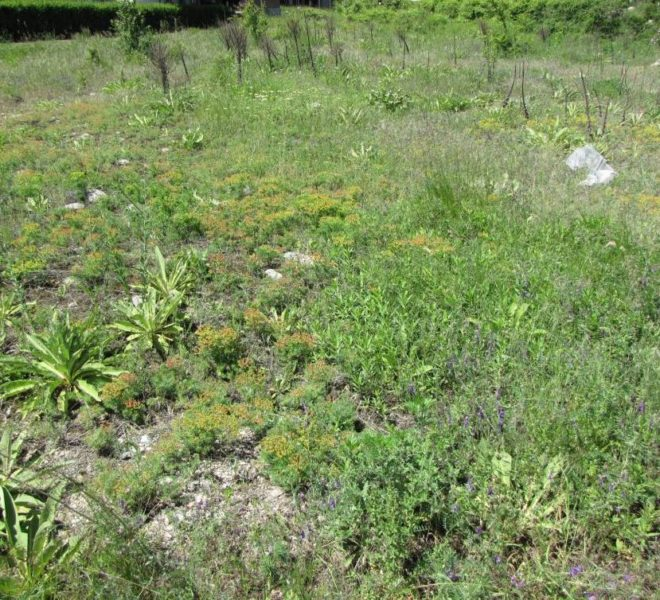 Plot of land for sale in Bansko