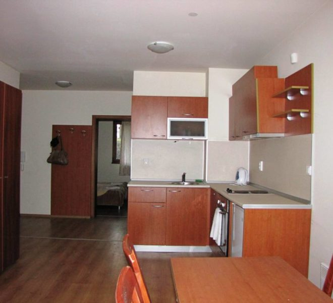 PBA1183 1 bedroom apartment in New Inn Bansko