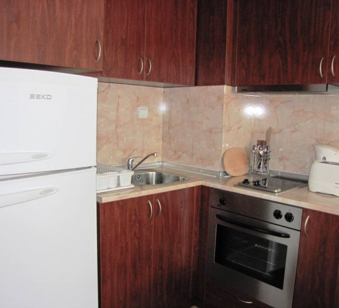 PBA1245 1 bedroom apartment for sale in Todorini Kuli, Bansko