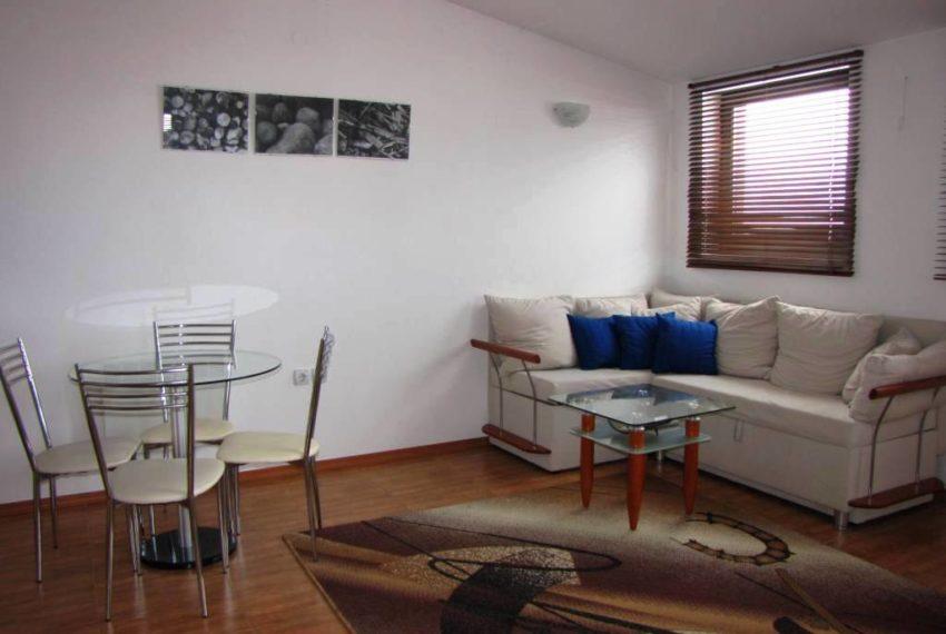 PBA1100 1 bedroom apartment for sale in Vila Vitality Bansko