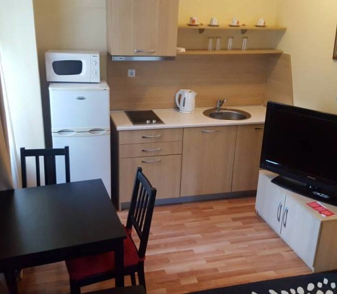 PBA1165 1 bedroom apartment for sale in Aquilon Residence and Spa in Banya near Bansko
