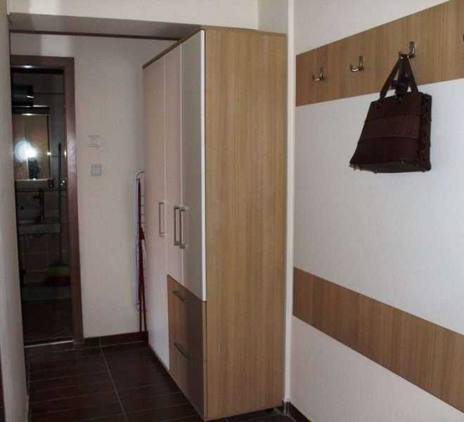 PBA1272 1 bed apartment for sale in Cedar Lodge 1 Bansko