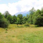 plot of land near Premier Hotel for sale in Bansko