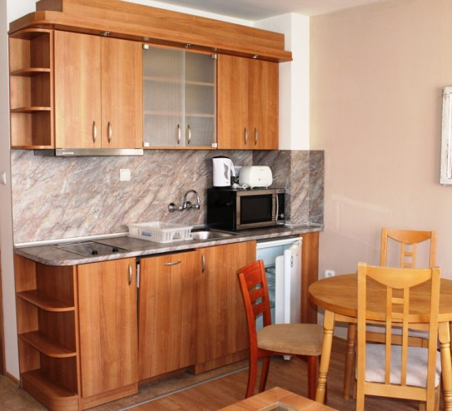 PBA1298 studio apartment for sale in Todorini Kuli, Bansko