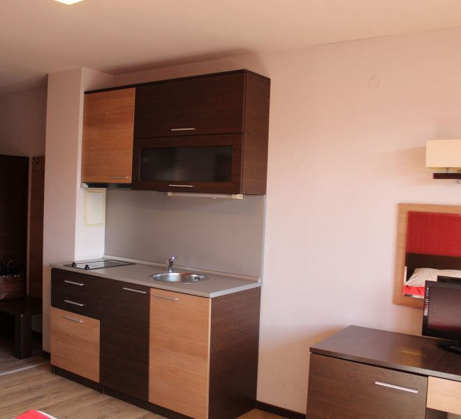 PBA1317 studio for sale in Hotel Alexander near Bansko